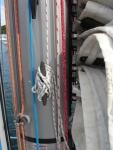 Ronstan Batten Cars-lower half
